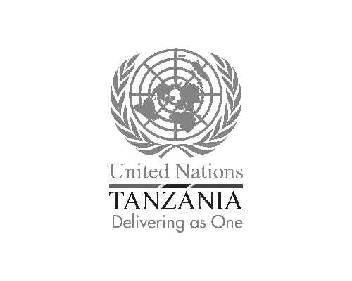 United Nations Tanzania