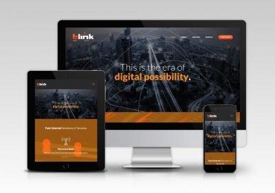 Blink Limited, Arusha, Tanzania